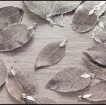 Zdjęcie - Liść naturalny metalizowany antyczne srebro 60mm