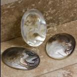 Zdjęcie - Dwukolorowy kaboszon kamea z masy perłowej z damą 40x30mm